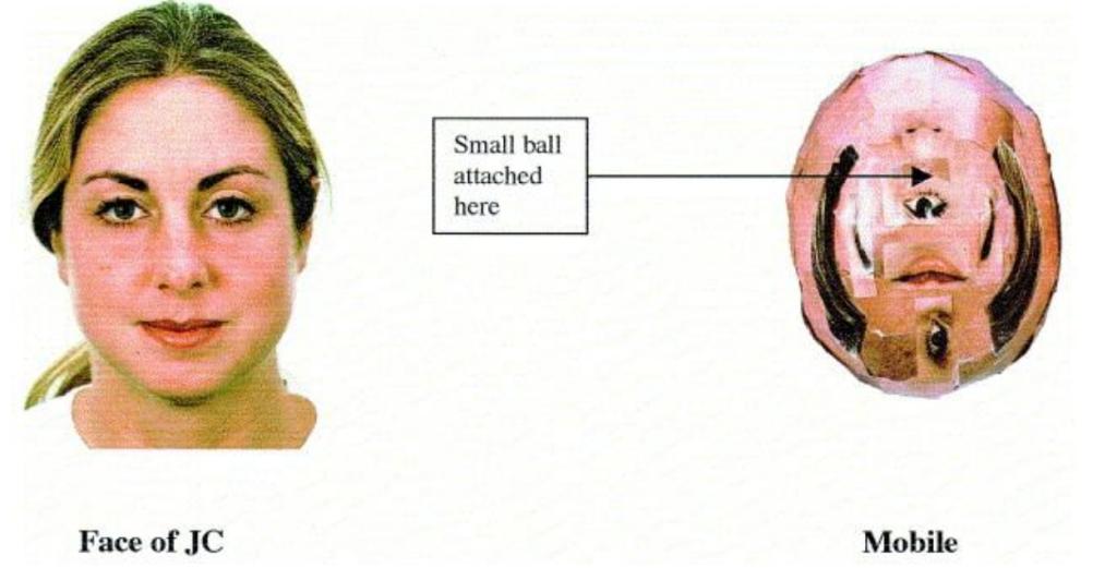 Figur fra (Connellan et al., 2000).